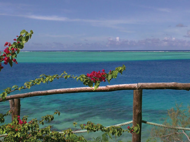 S2340011-12x6-Bouganvillea-View Huahine